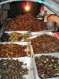 Insetti fritti in vendita a Khaosan Road. Foto di Texugo.