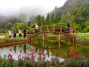 Doi Inthanon National Park. Foto di Morgan Miller.
