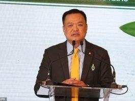 Thailandia valuta la sospensione del visto all'arrivo per i cinesi
